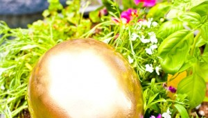facelogic - golden egg hunt